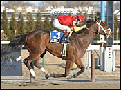 Affirmed Success Ready to Defend Carter Title