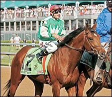 Steve Haskin's Analysis: Afleet Group of Horses in 2005