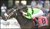 San Dare, Allamerican Bertie Win Gulfstream Stakes
