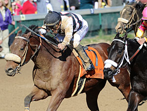 Amazombie in the 2011 Breeders' Cup Sprint.