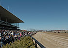 No Racing at Aqueduct Jan. 12