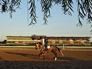 NYRA, Casino Firm Have Aqueduct Dining Deal