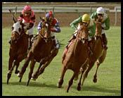 Santa Anita Race Report: A Star Reborn