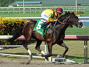 Stonestreet Has Star in Making in Atreides