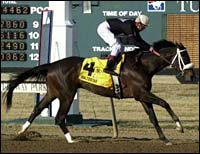Haskin's Derby Report: A Valentine for Zito and a Shooting Star at Turfway