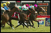 Beat Hollow Tries Keeneland Turf