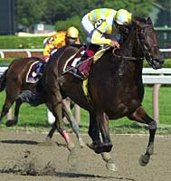 Beautiful Pleasure Will Race in 2001