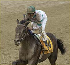 Best Minister Withdrawn from Belmont Stakes