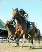 Big Bambu Wins Honorable Miss at Saratoga
