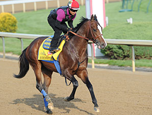Bodemeister on the track at Churchill Downs.