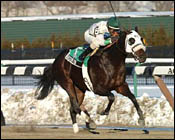 Lukas-Trained Boston Park Takes Whirlaway Stakes