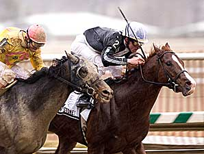 East Meets West in Carter Handicap