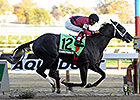 Cairo Prince Meets Honor Code in Solid Remsen