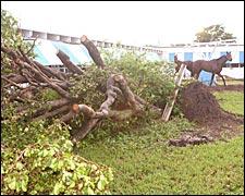 Katrina's Damage Minor at Florida Tracks; Both Serve as 'Staging Areas'