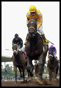 Santa Anita Race Report: Came Home First Home