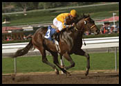 Steve Haskin's Derby Report: Mission Impossible? (2/4/2002)