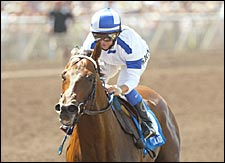 Candy Ride, Mineshaft Top Classic Future Bet