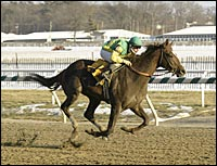 Capac Returns a Winner in Laurel Allowance