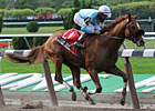 Casino Drive Waits for Belmont