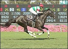 Japan's Cesario Conquers American Oaks