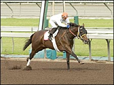 Island Sand, Artie, Happy Ticket Work at Belmont; Singletary, Choctaw Nation on West Coast