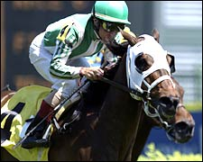 Stylish Takes Citgo Distaff Turf Mile