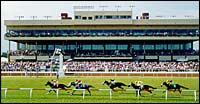 Colonial Downs Schedule Includes $2-Million Grass Bonus Scheme