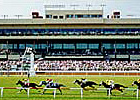 Colonial &#39;08 Meet Has 17 Stakes