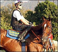 Haskin's Classic Report: Baffert Counting Down the Days