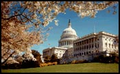 Congress to Vote on Internet Gambling Bill Tonight