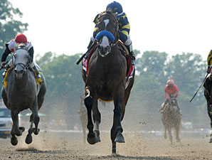 Contested Set for Mother Goose After 6F Drill