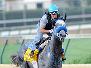 Creative Cause to Skip Belmont Stakes