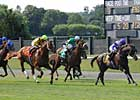 Asmussen: Curlin's 'Options are Open'