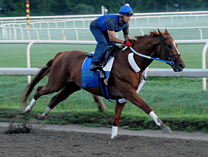 Curlin Has Easy Work at the Spa