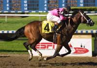 Odds-On Favorite Dollar Bill Wins Risen Star