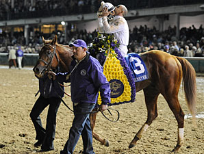 Drosselmeyer after winning the 2011 Breeders' Cup Classic.