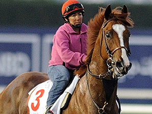 Dullahan - Dubai, March 27, 2013