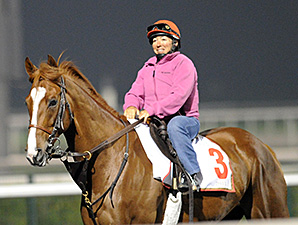 Dullahan - Dubai, March 28, 2013