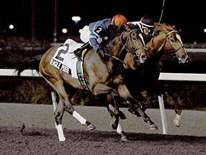Marathon Valedictory Closes Out Woodbine Meet