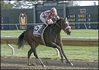 Ema Bovary Wins 9th Straight in Keeneland's Madison