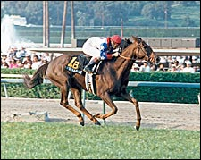 Champion Estrapade Dies at Age 25