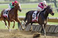 Ashland Winner Fleet Renee Works Toward Oaks
