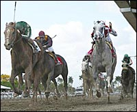 Friends Lake Makes Splash in Florida Derby