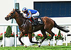 Gleneagles Still Champions Day Question Mark