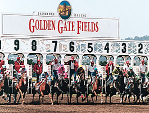 Attendance, Handle Averages Up at Golden Gate