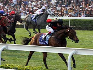 Good Ba Ba Breaks Mark in Hong Kong Mile