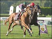Belmont Park Race Report (Cont.)