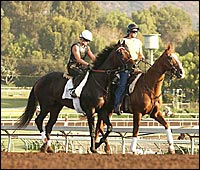 Santa Anita Work Tab Dominated by Mandella, Baffert 3-Year-Olds