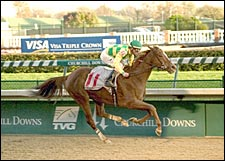Halory Leigh Nails Lady Tak in Downs Distaff