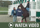 HRTV: Inside Information - 1/17/08
